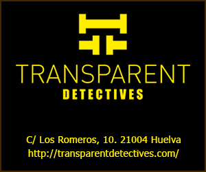 TRANSPARENT DETECTIVES